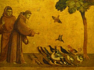 St Francis_2