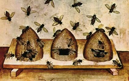 beekeeping_2.jpg